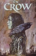 The Crow Vol 1 9