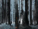 Wytches Vol 1 1