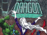 Savage Dragon Vol 1 13 B