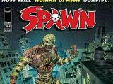 Spawn Vol 1 264