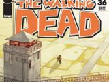 The Walking Dead Vol 1 36