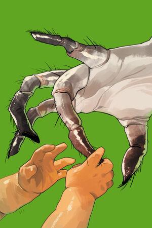 Cover for Saga #2 (2012)