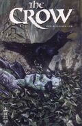 The Crow Vol 1 10