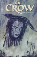 The Crow Vol 1 7