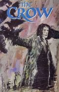 The Crow Vol 1 8