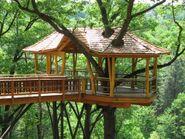 Treehouse-12-300x225