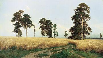 Fields of Barley, Russia