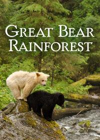 Great Bear Rainforest (2019) Poster