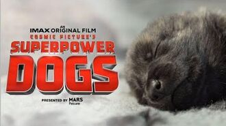Superpower Dogs Official Trailer Experience It In IMAX®