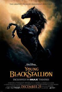 The Young Black Stallion Poster