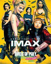 Birds of Prey - IMAX Poster