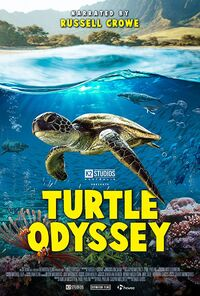 Turtle Odyssey (2018) Poster