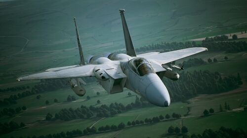 AC7 F-15C