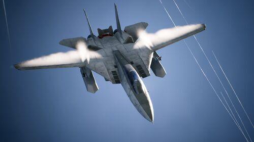 AC7 F-14D
