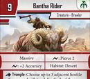 Bantha Rider