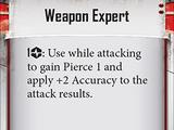Weapon Expert