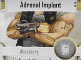 Adrenal Implant