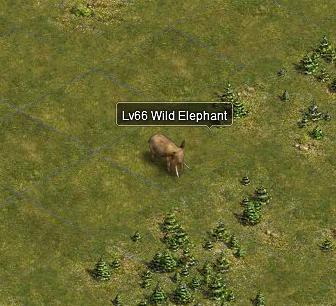 Wildelephant