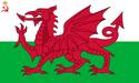 Flag of Welsh SSR (worcester- UDI 1996)