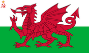 Flag of Welsh SSR (worcester- UDI 1996)