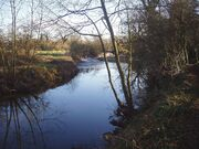 The banks of the river Arrow (Alcester, Warwickshire)