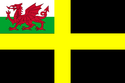 The Flag of St David with Welsh Red Dragon