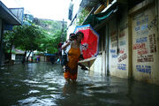 Hanoi 2008 flood, 01