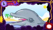DolphinNightmare