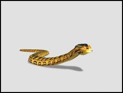 File:Anaconda th.jpg