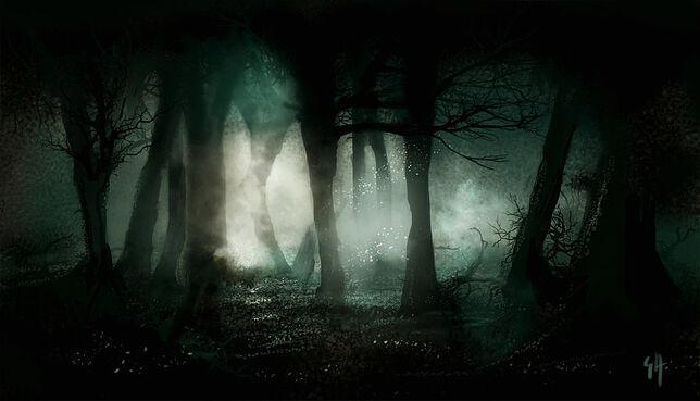 Bosque Shima