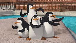 Madagascarpenguins