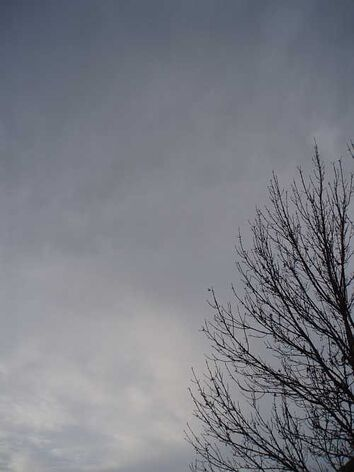 Gray-sky