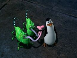 I-brought-the-chameleons-penguins-of-madagascar-16733796-458-348