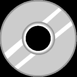File:Flash Disk.png