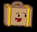 SuitcaseSmileIdle