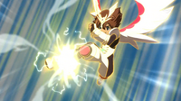 Tenma shot the ball which was used for 3D Reflector
