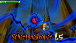 Schattenakrobat L5