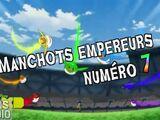 Manchots Empereurs N°7