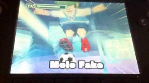 Inazuma Eleven 2 Firestorm Mole Fake
