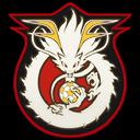 Logo de L'Alliance du Dragon