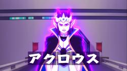 Acrous Obies König