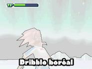 Aurora Dribble 13