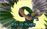 Rizo de dragón 5