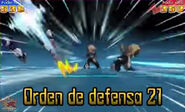 Orden de defensa 21 4