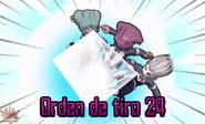 Orden de Tiro 24 (3DS)