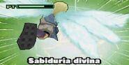 SABIDURIA DIVINA DS 3