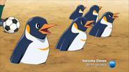 Pingüino Emperador Nº2 (3)
