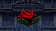 Desesperación Floral (Película) 5 HQ