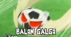 Balón galgo