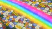 Rainbow Loop IE 43 HQ 13
